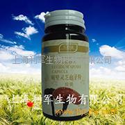 上海利军买得康破壁灵芝孢子粉胶囊招商