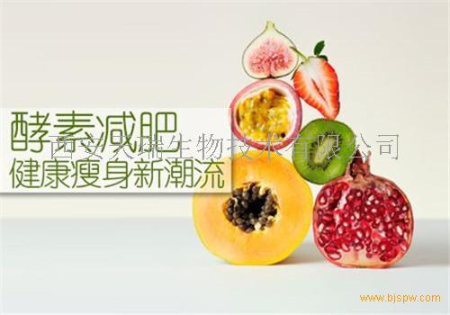刺梨酵素粉