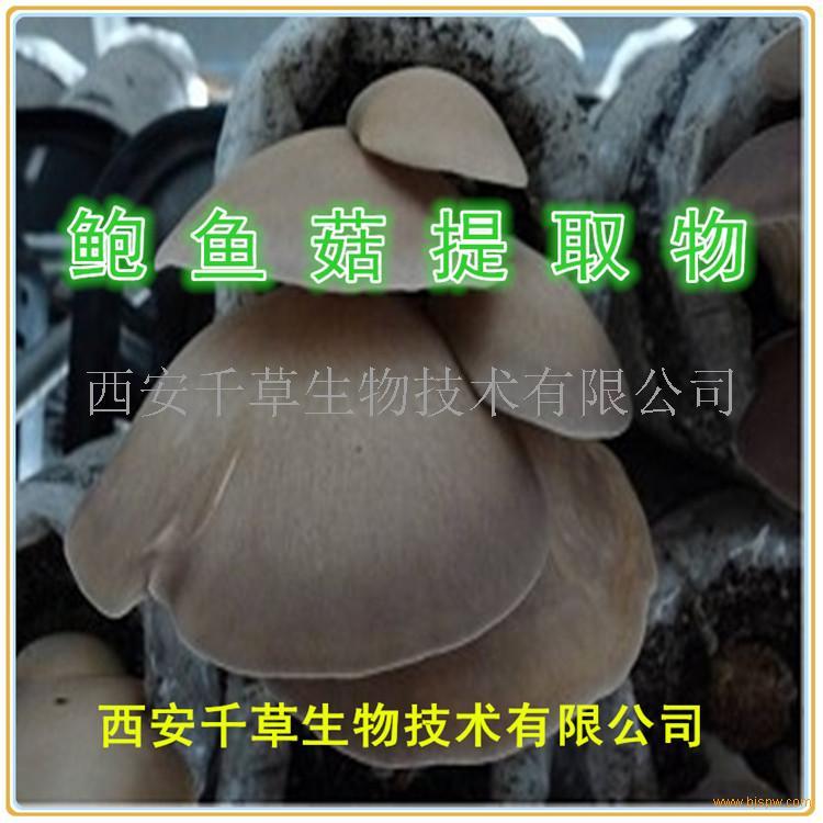 鲍鱼菇浓缩粉