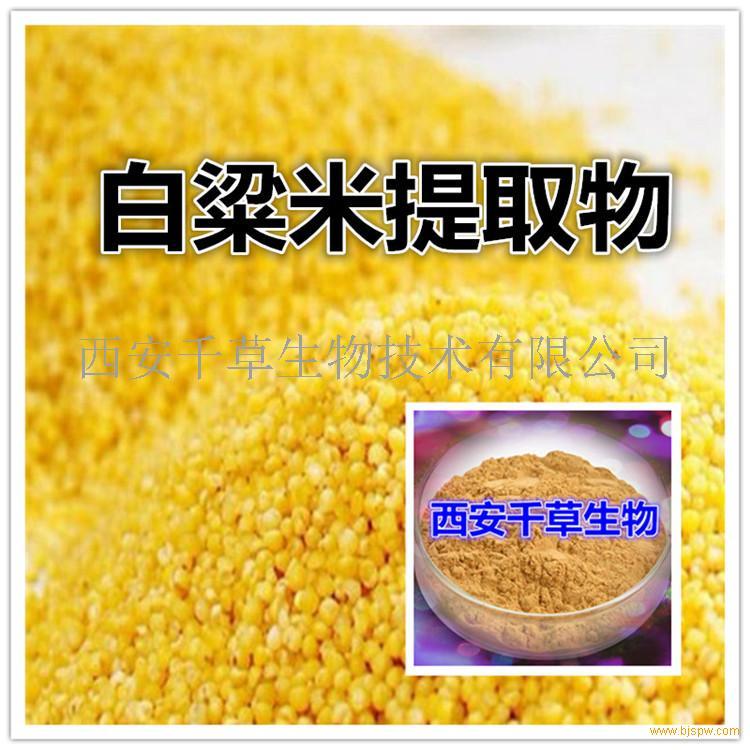 白粱米浓缩粉