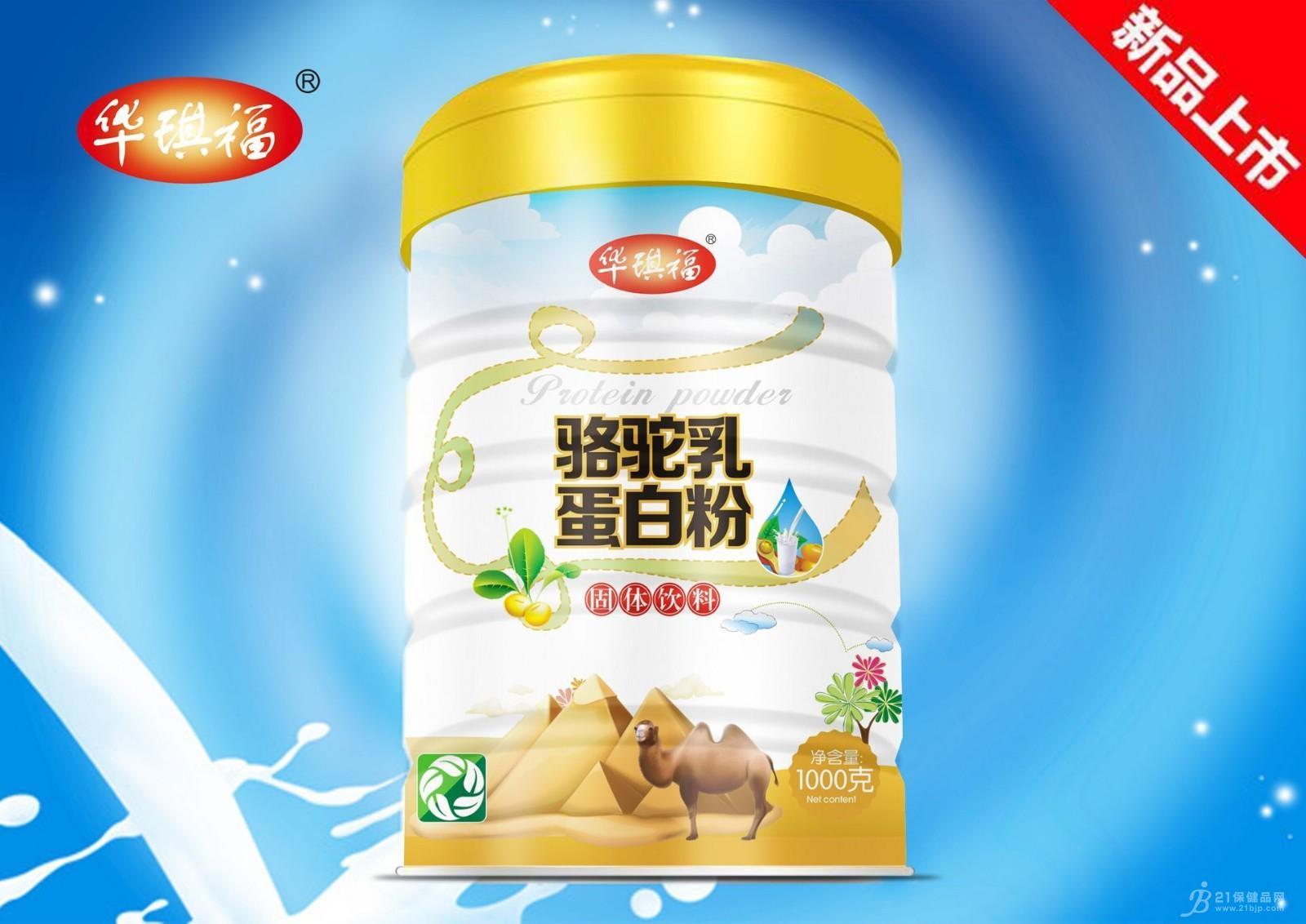 骆驼乳蛋白粉-蛋白质粉招商