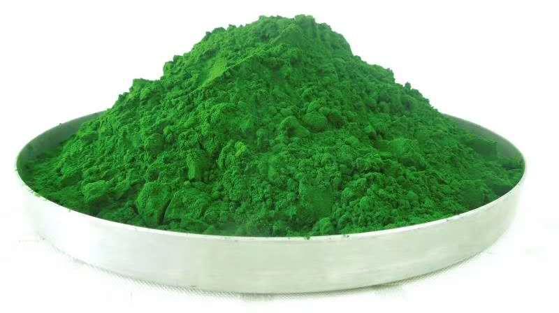 赐百年生产厂家供应小球藻