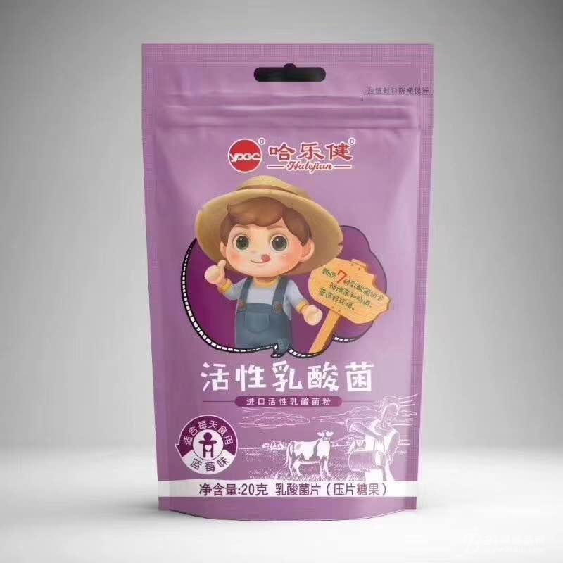 乳酸菌压片糖果(蓝莓味)招商