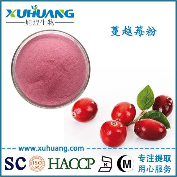 SC认证厂家现货供应蔓越莓粉蔓越莓汁粉