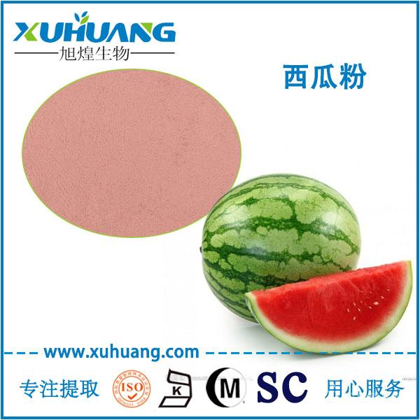 SC认证厂家现货供应西瓜粉西瓜果汁粉