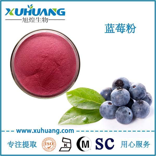 SC认证厂家现货供应蓝莓果粉蓝莓汁粉