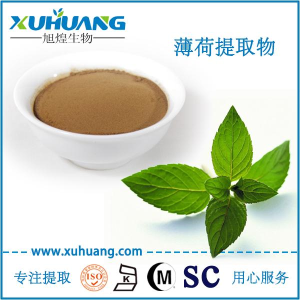 SC厂家现货供应纯天然薄荷提取物薄荷粉
